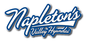 Napleton's Valley Hyundai Family Fun Land
